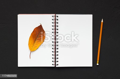 istock Beautiful dry autumn leaf on notebook and blank space for verse 1174502020