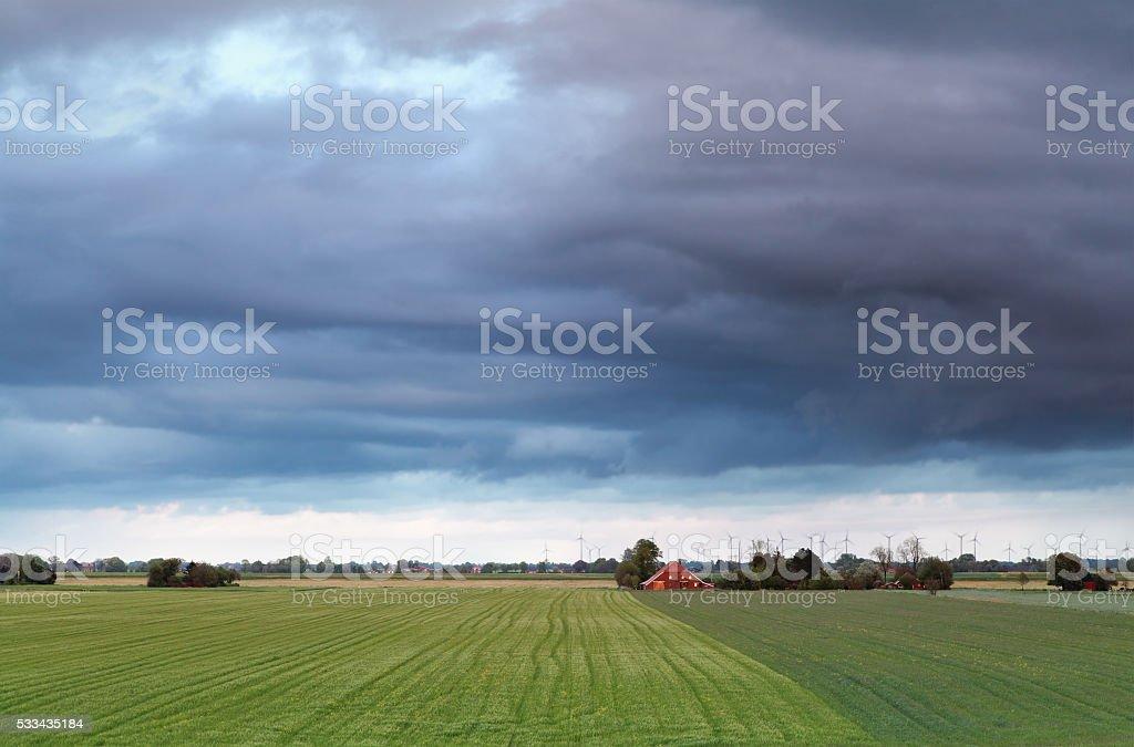 beautiful Dutch farmland in spring stock photo