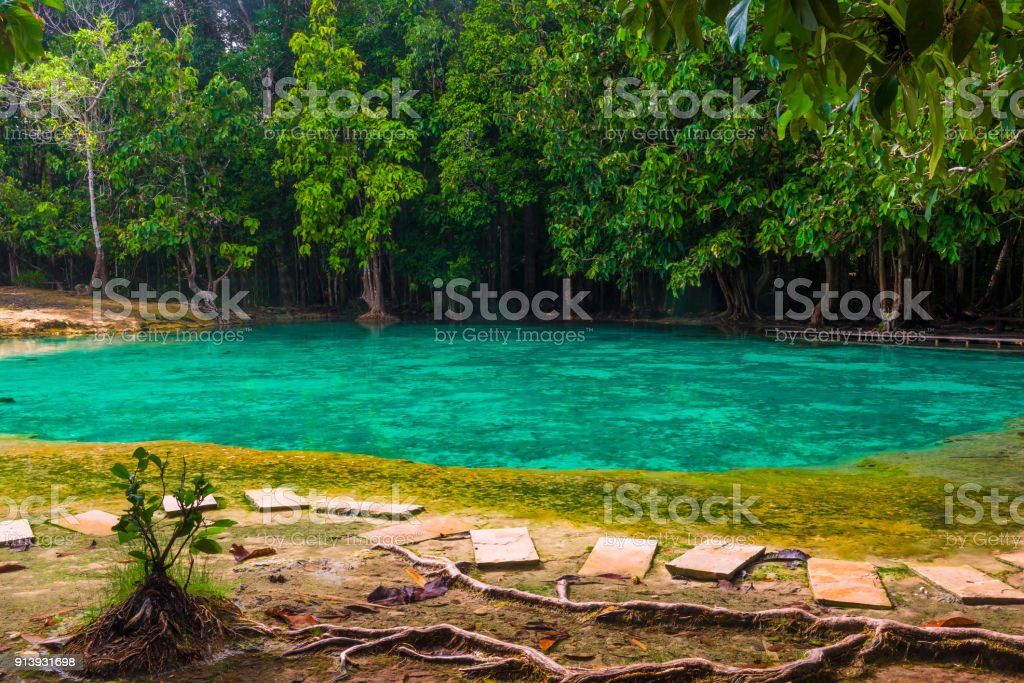 beautiful emerald pool is a popular place in Krabi for visiting tourists in Thailand stock photo