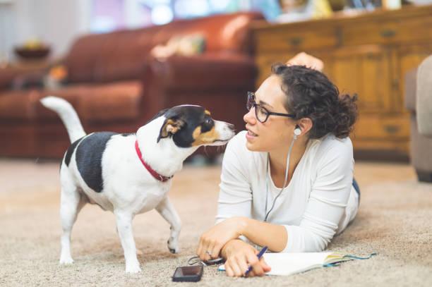 Beautiful ethnic woman listens to a podcast while her dog keeps her picture id962765632?b=1&k=6&m=962765632&s=612x612&w=0&h=o8pgerint7u 7g61kqohnzazxeul0g7fwaubybr4r2c=