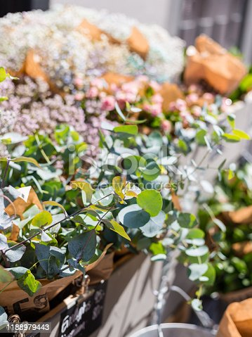 istock Beautiful eucalyptus branch decoration in florist shop on outdoor market. Plants for sale 1188979443