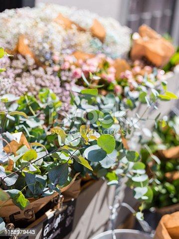 istock Beautiful eucalyptus branch decoration in florist shop on outdoor market. Plants for sale 1188979443