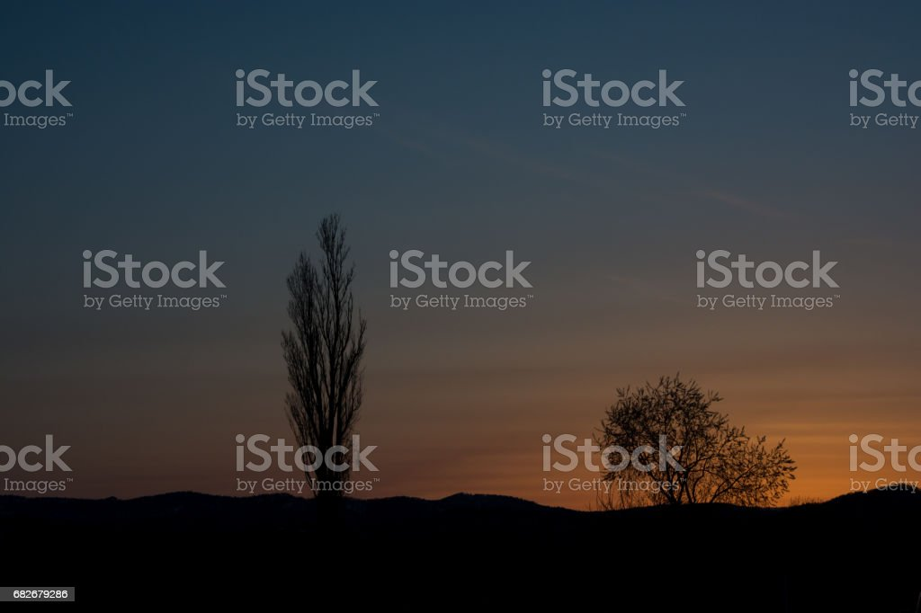 Beautiful evening sky with silhouette of trees stock photo