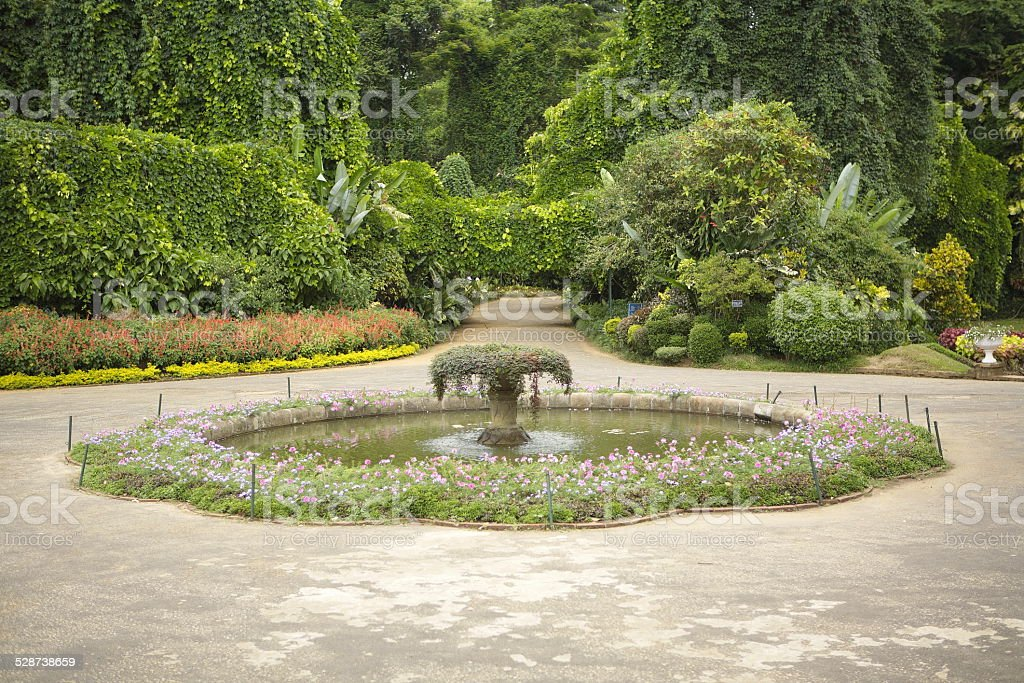 Beautiful exotic garden with water pool stock photo