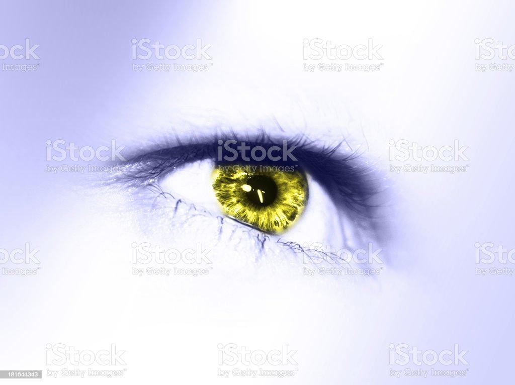 beautiful eye isolated royalty-free stock photo