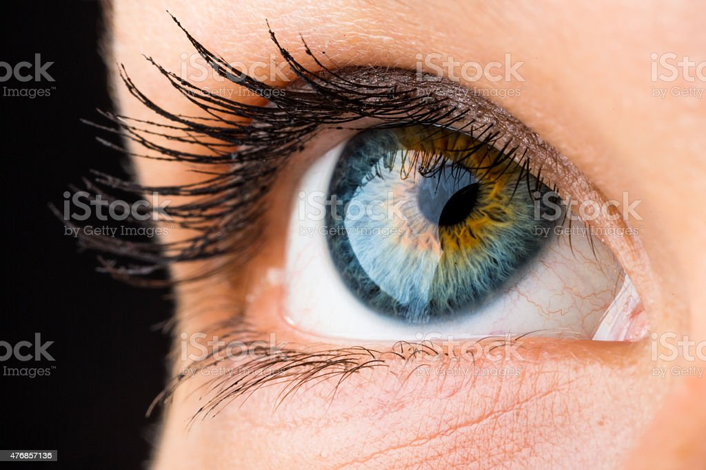 beautiful eye macro stock photo
