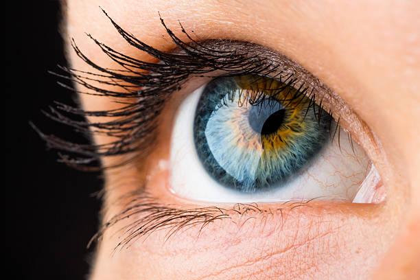 beautiful eye macro beautiful macro of an eye looking up iris eye stock pictures, royalty-free photos & images