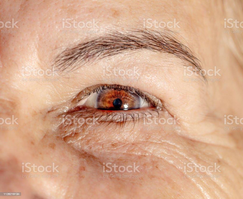 Schöne Augen Eine 5 Jährige Frau Stockfoto und mehr Bilder von 5-5 Jahre