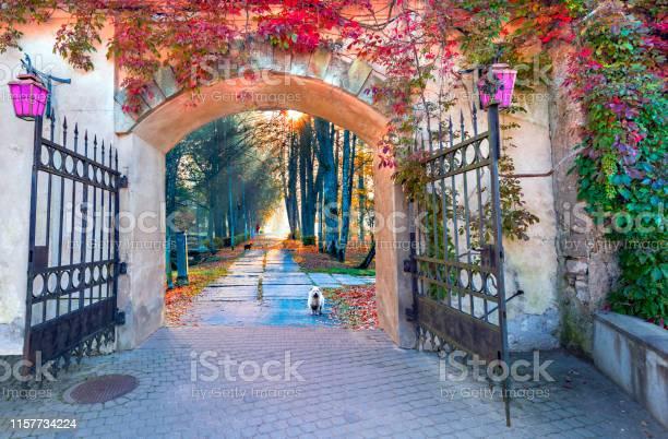 Beautiful fairyland in autumn europe picture id1157734224?b=1&k=6&m=1157734224&s=612x612&h=vldoknrfagrowhmgzturasbyrnei awv0yq3 73r39y=