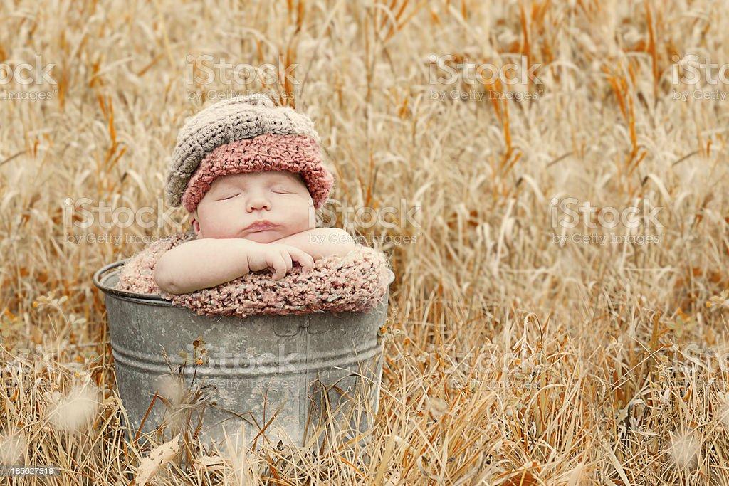 Beautiful fall baby royalty-free stock photo