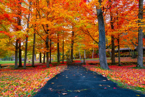 Vermont Landscape Stock Photos, Pictures & Royalty-Free ...