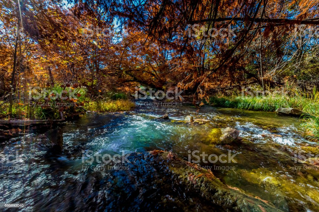 Beautiful Fall Foliage on the Clear Guadelupe River, Texas. stock photo