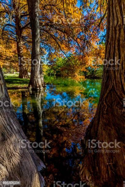 Photo of Beautiful Fall Foliage on the Guadelupe River, Texas.