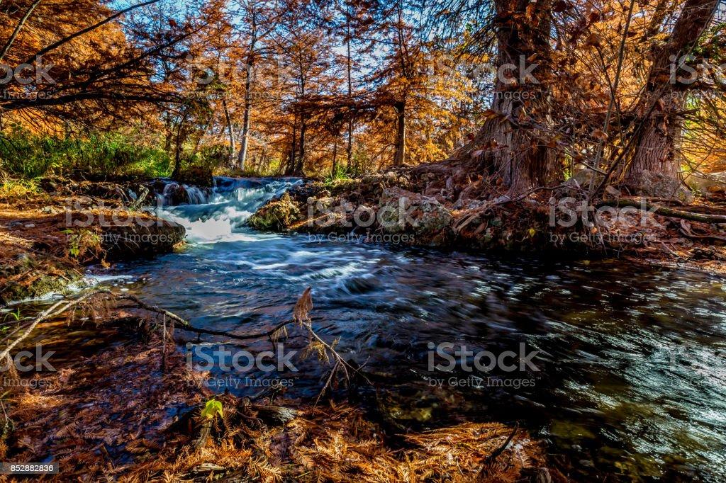 Beautiful Fall Foliage on the Guadelupe River, Texas. stock photo