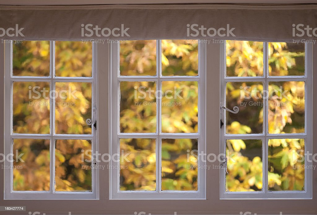 Beautiful fall leaves through old window royalty-free stock photo