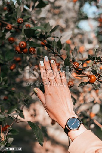 istock Beautiful fall manicure 1061592948