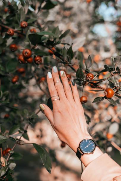 schöne herbst-maniküre - herbst nagellack stock-fotos und bilder