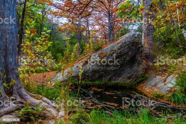 De Daling Van De Prachtige Landschappen Van Hamilton Creek In Texas Stockfoto en meer beelden van Als in een droom