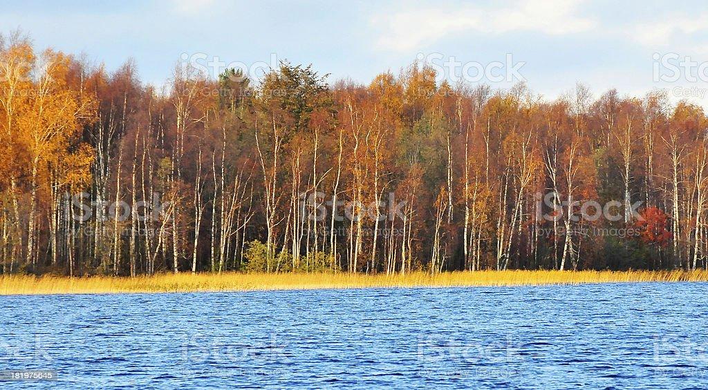 Beautiful fall season along Russia waterway royalty-free stock photo