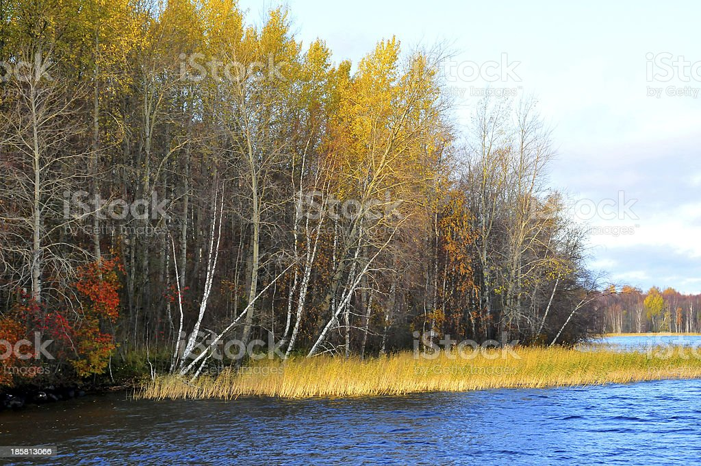 Beautiful fall season along Russia waterway royalty-free stock photo