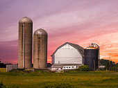 Beautiful farm scene of a wood barn and concrete silo with gorgeous pink and orange sunset beyond and crop field in the foreground in Wisconsin.