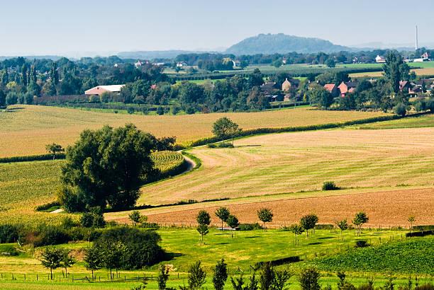 Wunderschönen Wiesen Landschaft – Foto