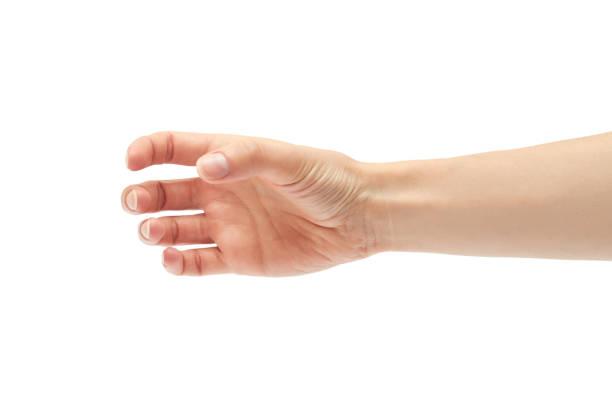 beautiful female hand holding gesture. isolated on white background - afferrare foto e immagini stock