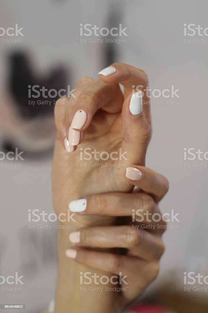 Beautiful female hands with manicure. Ultra light pink and classic white nail polish and well conditioned fingers. royalty-free stock photo