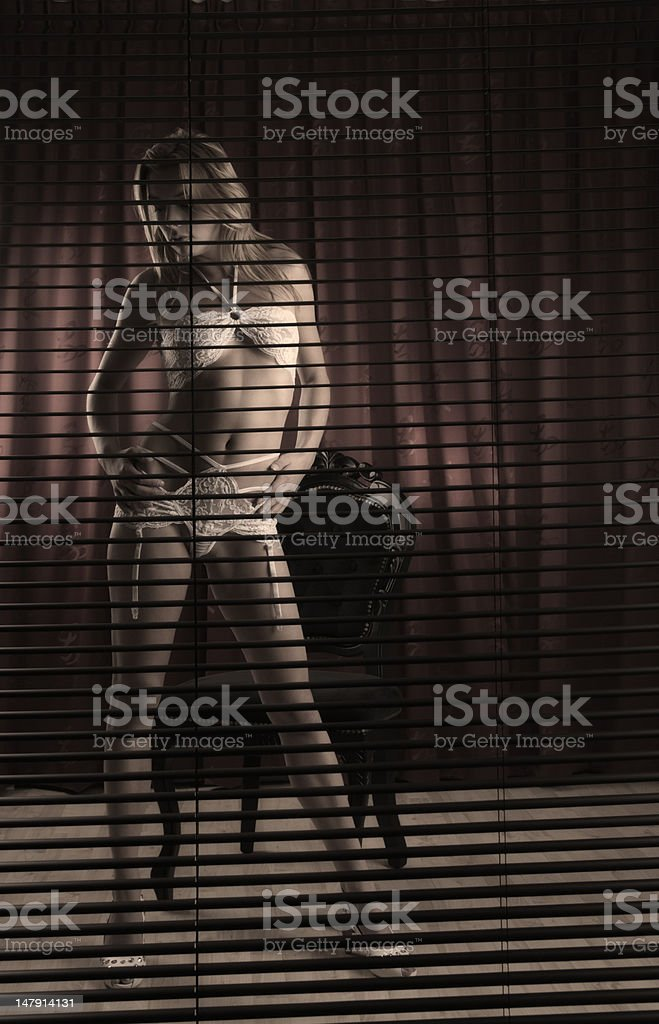 Beautiful female in lingerie stock photo