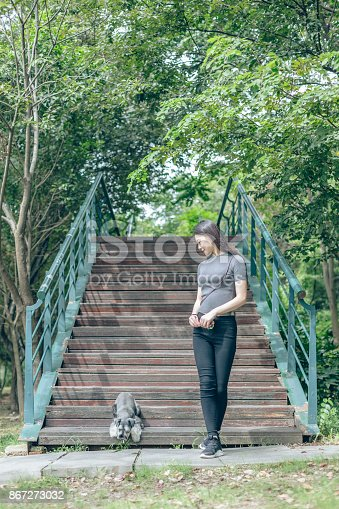 istock beautiful female owner relaxing at park with her adorable schnauzer 867273032