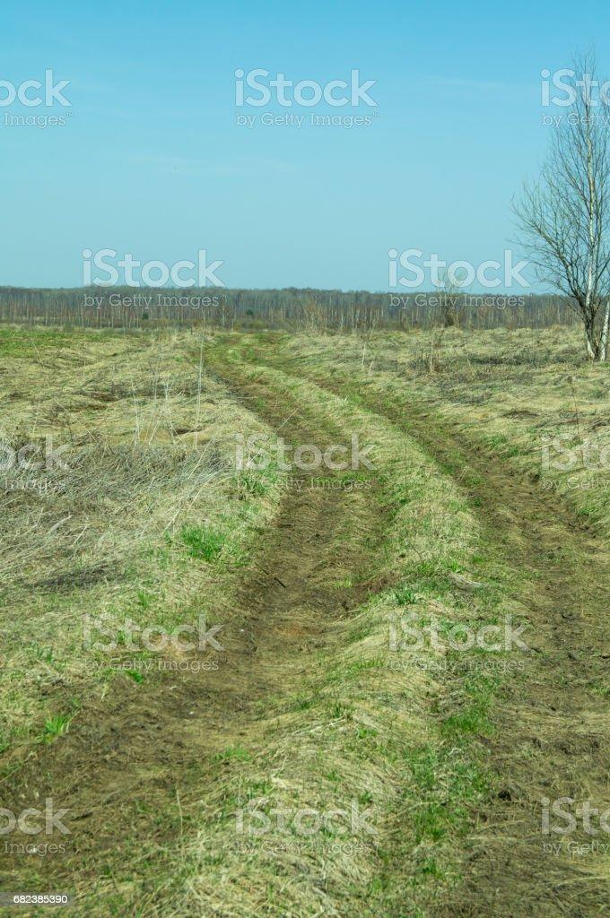 route et beau champ photo libre de droits