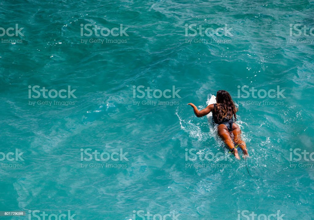 Beautiful fit surfer girl paddling out in crystal clear blue water stock photo