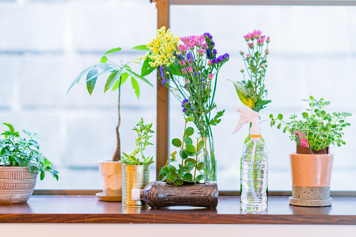 Beautiful floers in upcycled pet bottles and cans