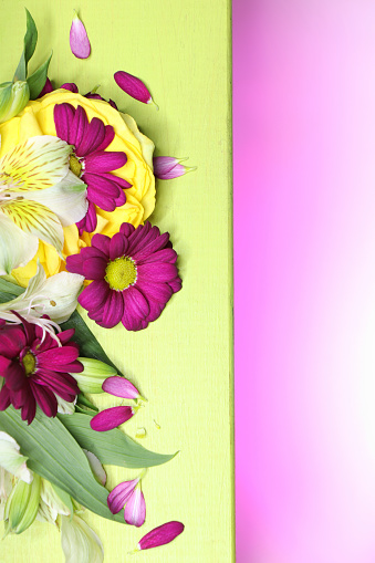 Beautiful flower arrangement of decorative small lilies and chrysanthemums on a colored light green and pink background.