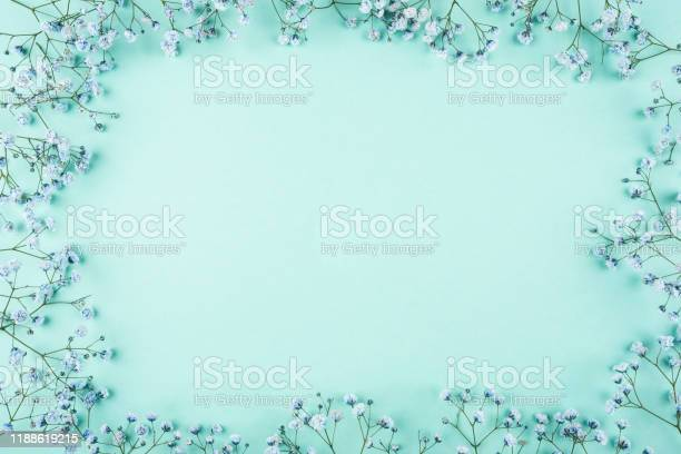 Beautiful flower background of blue gypsophila flowers picture id1188619215?b=1&k=6&m=1188619215&s=612x612&h=5 vnrnh5zwx8pluehxfdwn7iy1ox r67jttwlleuyay=