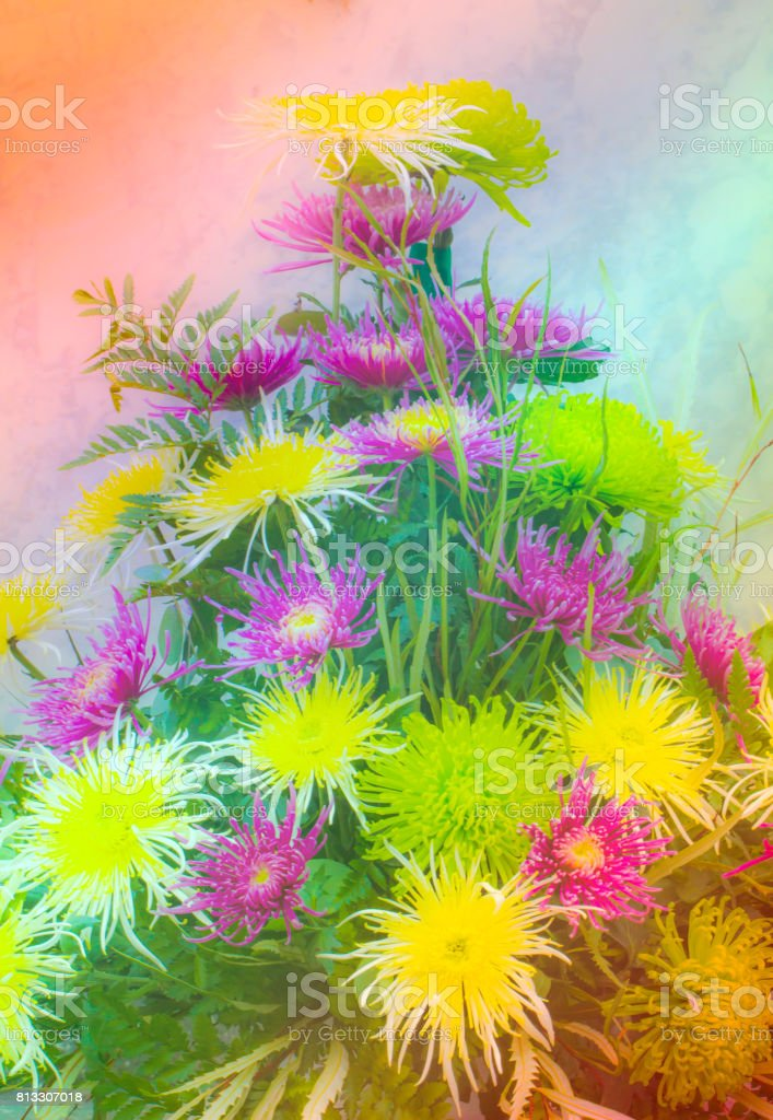 Beautiful Flower Background Wallpaper Made With Color Filters Effect