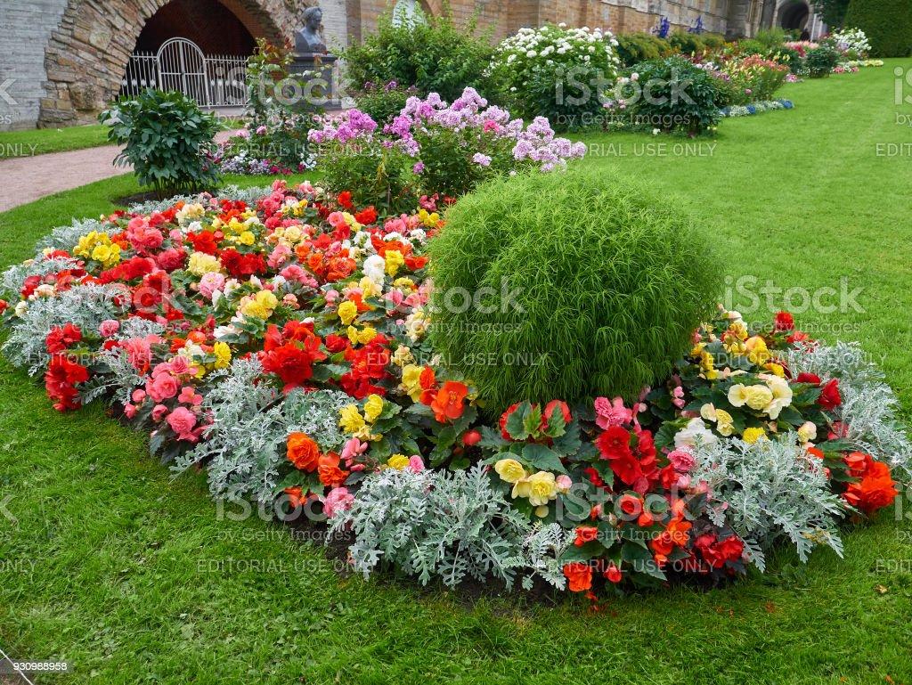 Beautiful Flower Beds In Tsarskoye Selo Pushkin St Petersburg Russia