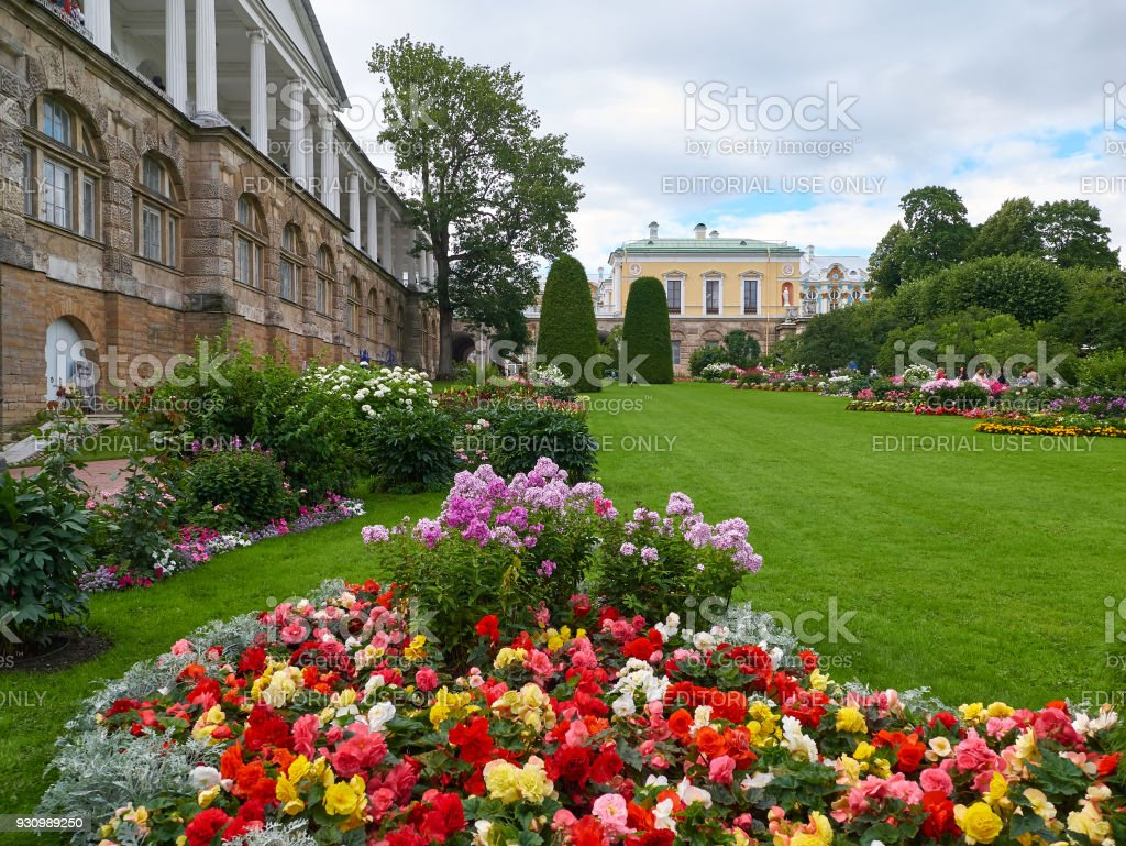 Beautiful flower beds in Tsarskoye Selo, Pushkin, St. Petersburg, Russia stock photo