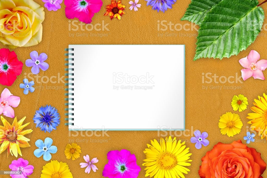 Beautiful flower frame with copybook in center on orange gentle...