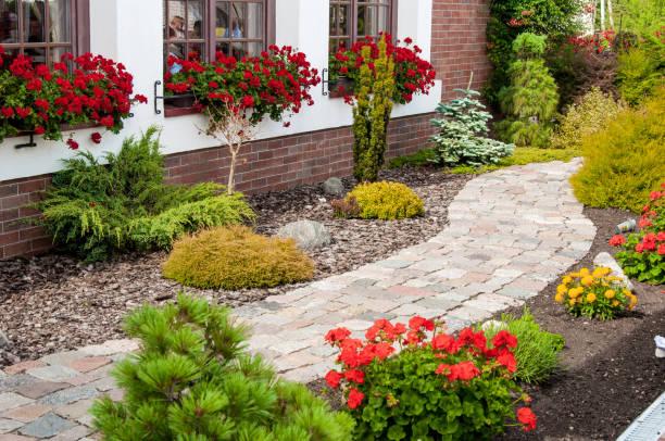beautiful flower garden - giardinaggio foto e immagini stock