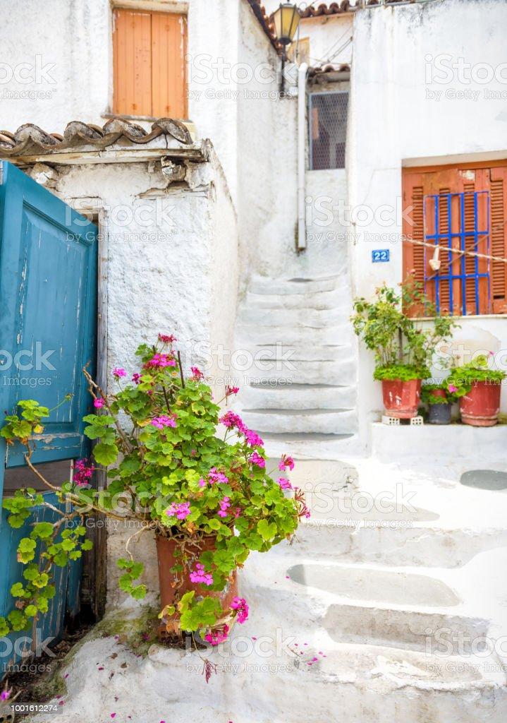 Beautiful flower on a narrow old street in Anafiotika, Plaka district, Athens, Greece stock photo