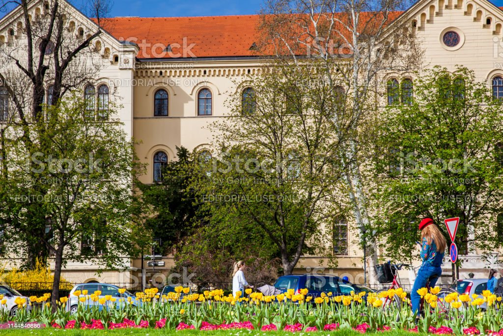 Beautiful flowers and people enjoying a sunny early spring day and...