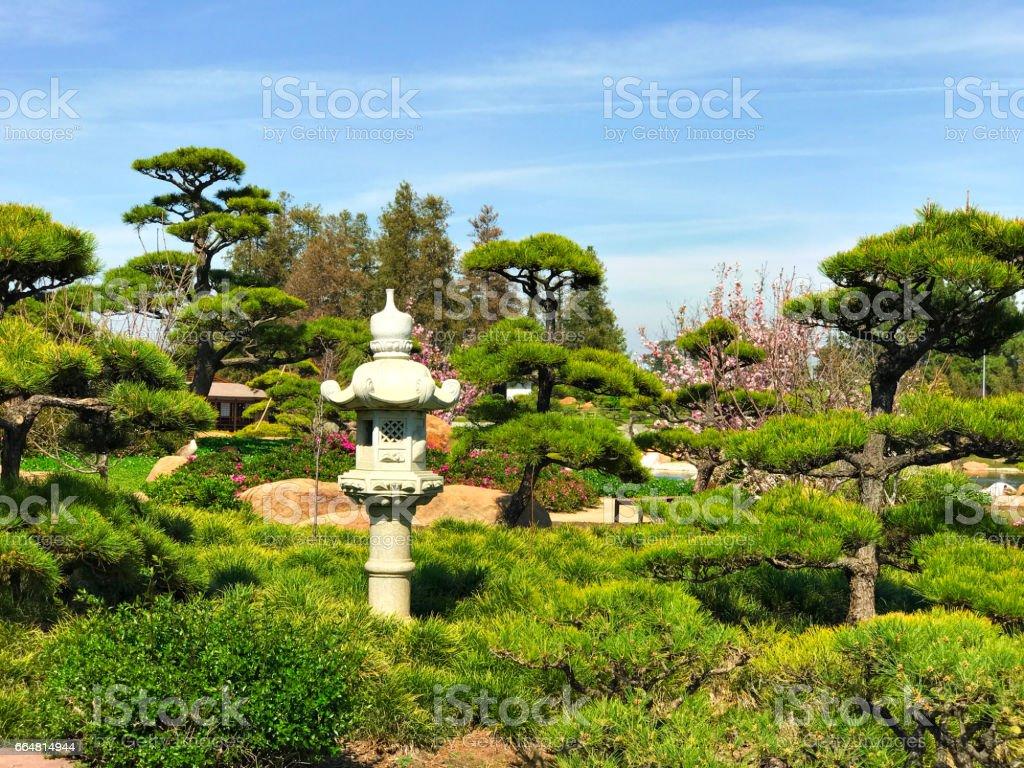 Schöne Blumen Und Bäume Im Japanischen Garten Stockfoto und mehr Bilder von  Berühmte Persönlichkeit