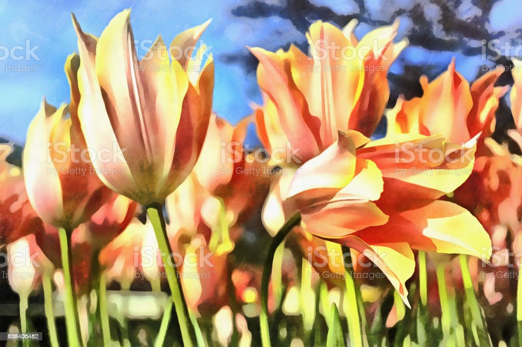 Beautiful flowers colorful painting at Keukenhof flower garden stock photo