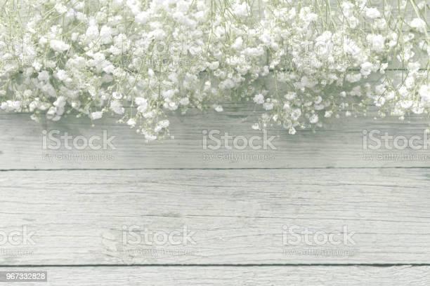Beautiful flowers gypsophila picture id967332828?b=1&k=6&m=967332828&s=612x612&h=efpnjzsj jaqaqenuvoeyu3jr xrfcamz iwce7nbbk=