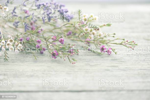 Beautiful flowers heather on wooden background picture id819399858?b=1&k=6&m=819399858&s=612x612&h=gb8obdprgs9fwk1fo hf5zcayyvx0tdvivoam igpgi=
