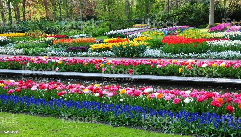 Foto De Paisagem Lindas Flores No Jardim De Keukenhof Este é