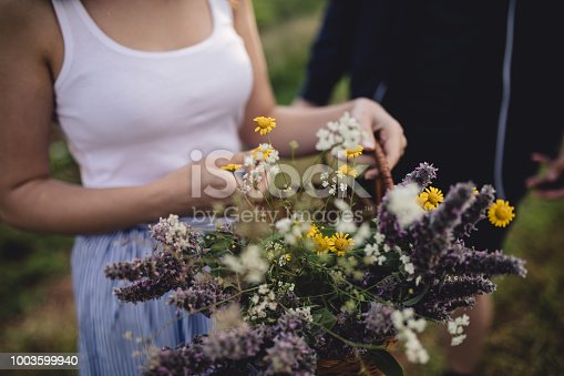 Lovely and gorgeous hipster girl with a basket full of flowers, traveling through a green field.