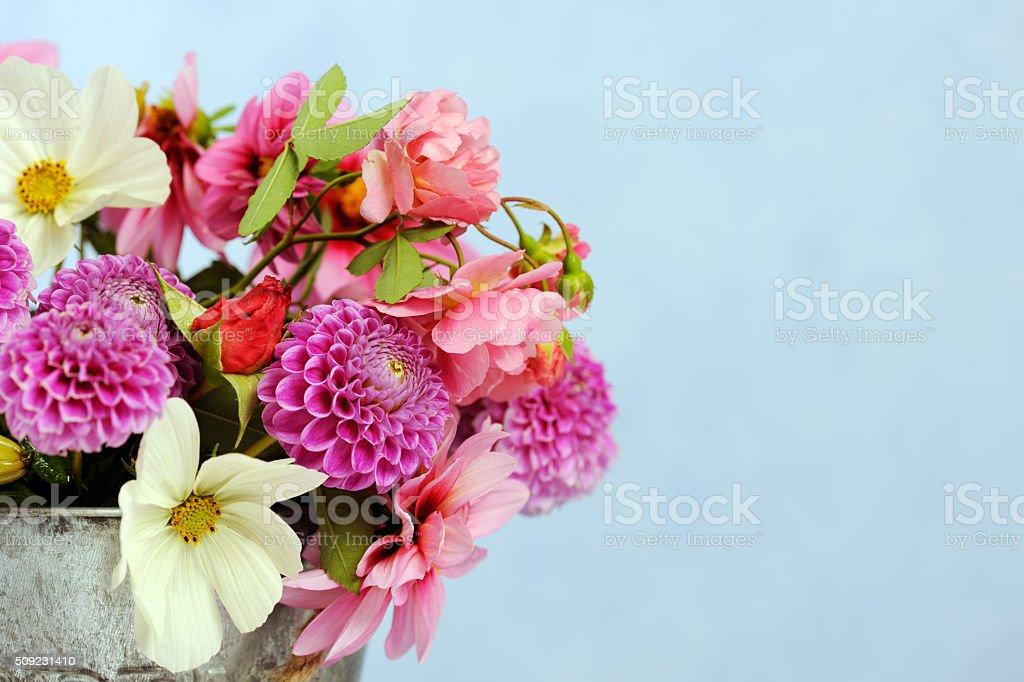 Belles fleurs - Photo