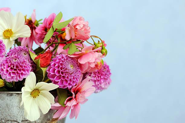 Schöne Blumen – Foto